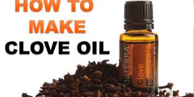 cara membuat minyak cengkeh